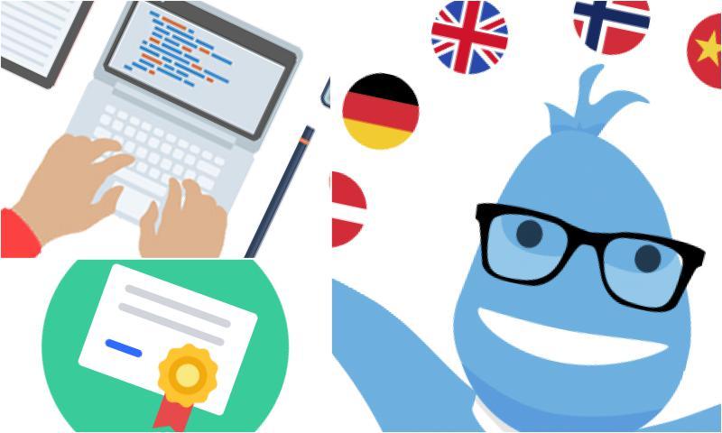 Akademik Tercüme Hangi Alanlarda Yapılır?