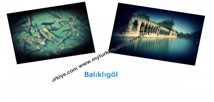 Balıklıgöl, Urfa'nın Mistik Sembolü