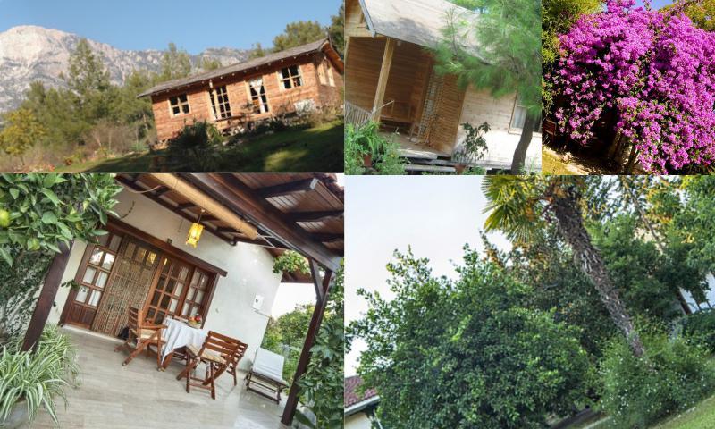 Doğal Bir Tatil Anlayışı, Flora Akdeniz Bahçesi