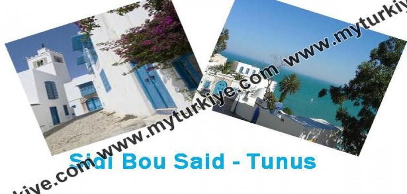 Sidi Bou Saidi Mutlaka Görmelisiniz